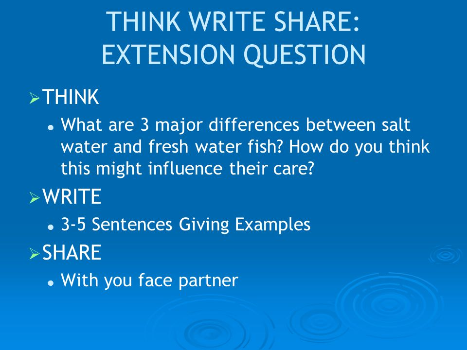 THINK WRITE SHARE: EXTENSION QUESTION   THINK What are 3 major differences between salt water and fresh water fish.