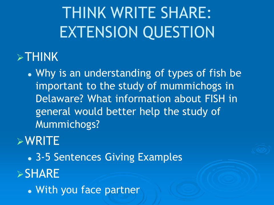 THINK WRITE SHARE: EXTENSION QUESTION   THINK Why is an understanding of types of fish be important to the study of mummichogs in Delaware.