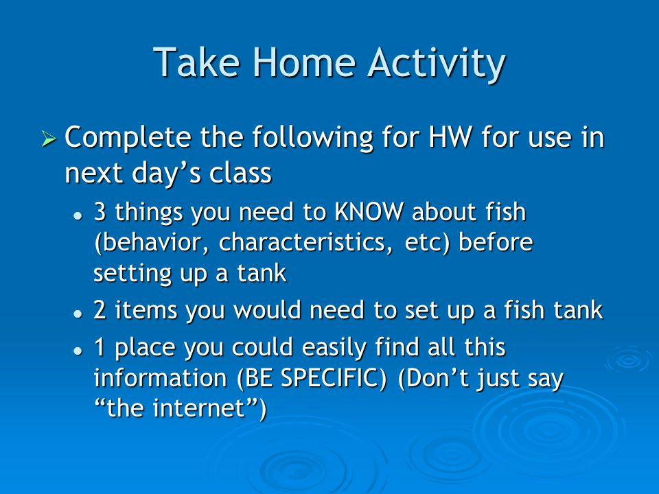 Take Home Activity  Complete the following for HW for use in next day's class 3 things you need to KNOW about fish (behavior, characteristics, etc) before setting up a tank 3 things you need to KNOW about fish (behavior, characteristics, etc) before setting up a tank 2 items you would need to set up a fish tank 2 items you would need to set up a fish tank 1 place you could easily find all this information (BE SPECIFIC) (Don't just say the internet ) 1 place you could easily find all this information (BE SPECIFIC) (Don't just say the internet )