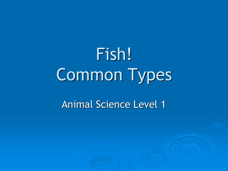 Fish! Common Types Animal Science Level 1