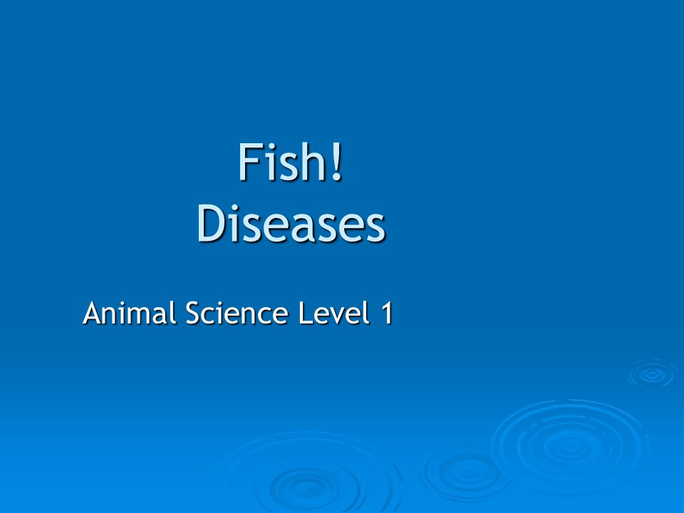 Fish! Diseases Animal Science Level 1