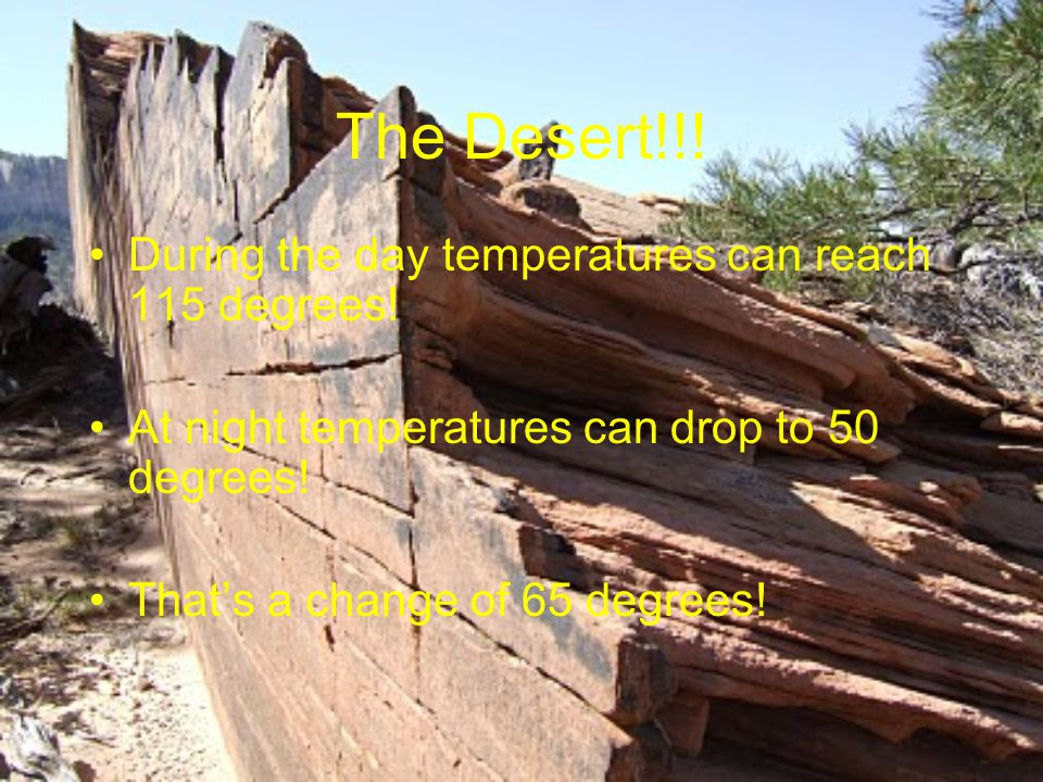The Desert!!. During the day temperatures can reach 115 degrees.