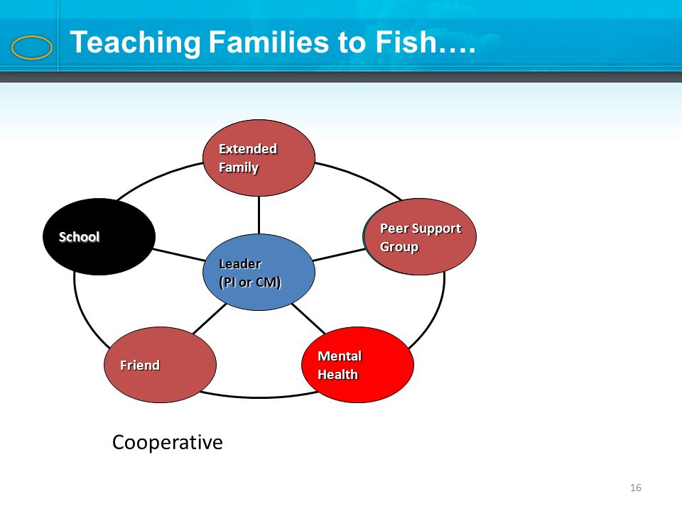 16 Teaching Families to Fish….
