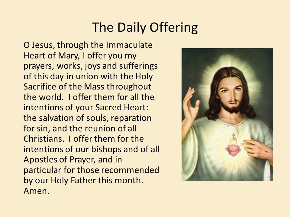The Daily Offering O Jesus, through the Immaculate Heart of Mary, I offer you my prayers, works, joys and sufferings of this day in union with the Hol