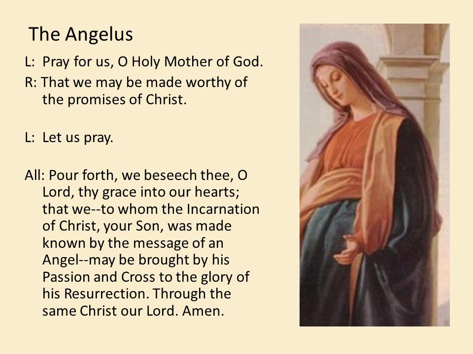 The Angelus L: Pray for us, O Holy Mother of God. R: That we may be made worthy of the promises of Christ. L: Let us pray. All: Pour forth, we beseech
