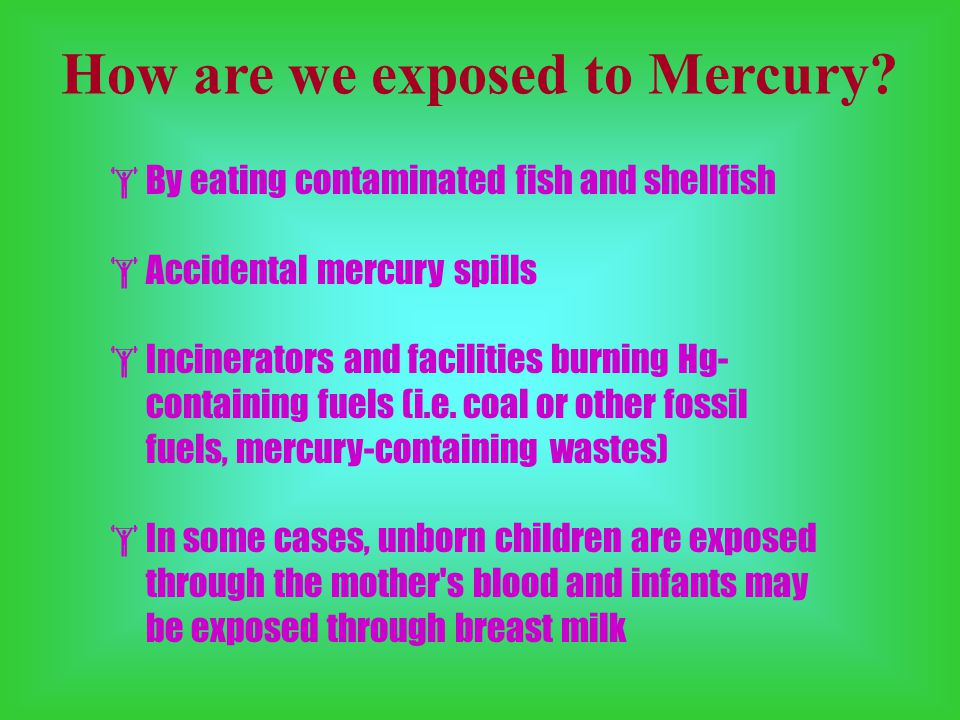 How are we exposed to Mercury.