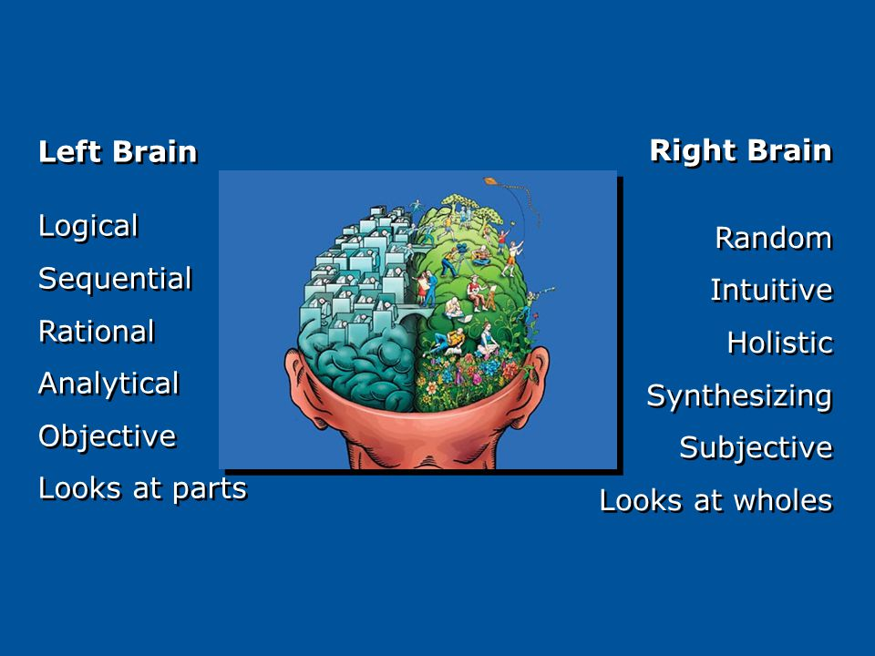 Right Brain Random Intuitive Holistic Synthesizing Subjective Looks at wholes Right Brain Random Intuitive Holistic Synthesizing Subjective Looks at wholes Left Brain Logical Sequential Rational Analytical Objective Looks at parts Left Brain Logical Sequential Rational Analytical Objective Looks at parts
