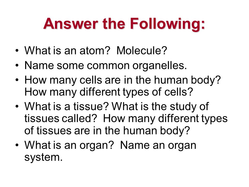 Answer the Following: What is an atom. Molecule. Name some common organelles.