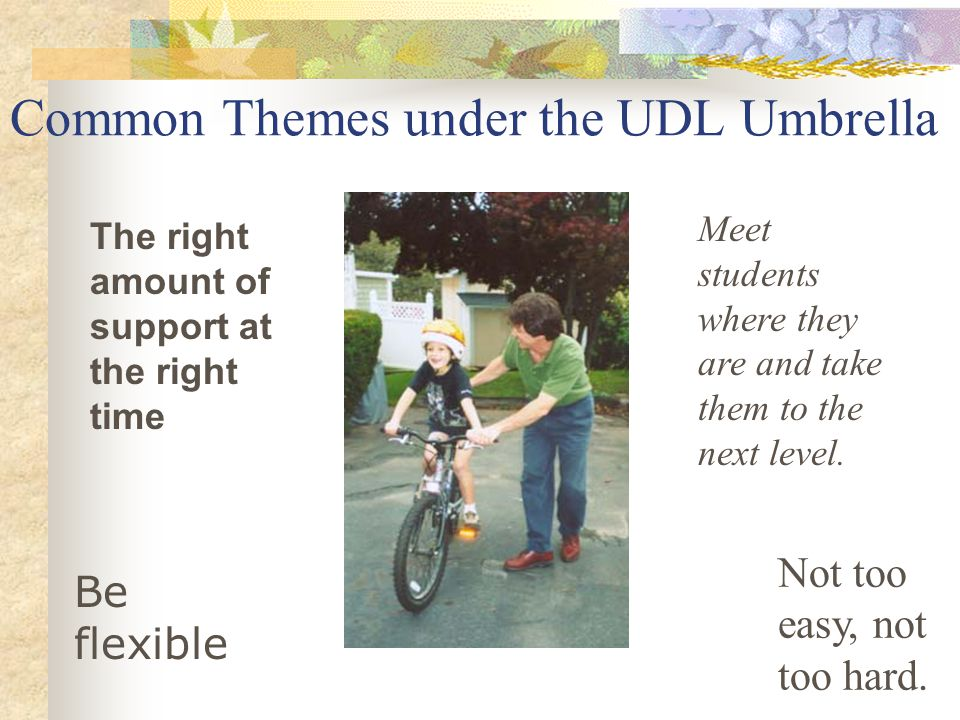 Common Themes under the UDL Umbrella The right amount of support at the right time Not too easy, not too hard. Be flexible Meet students where they ar