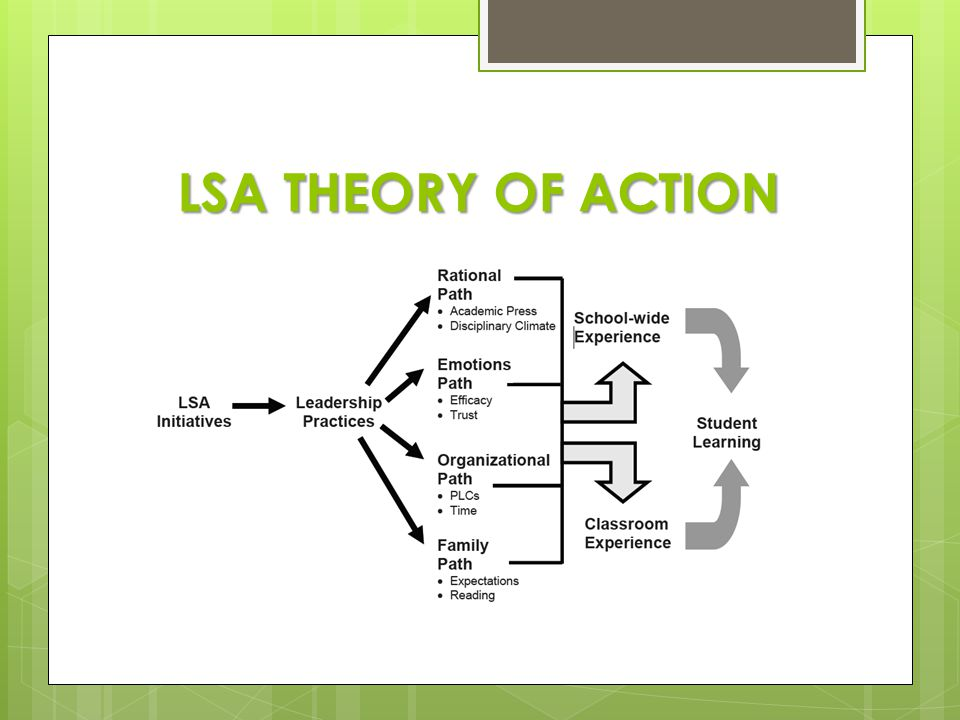 LSA THEORY OF ACTION