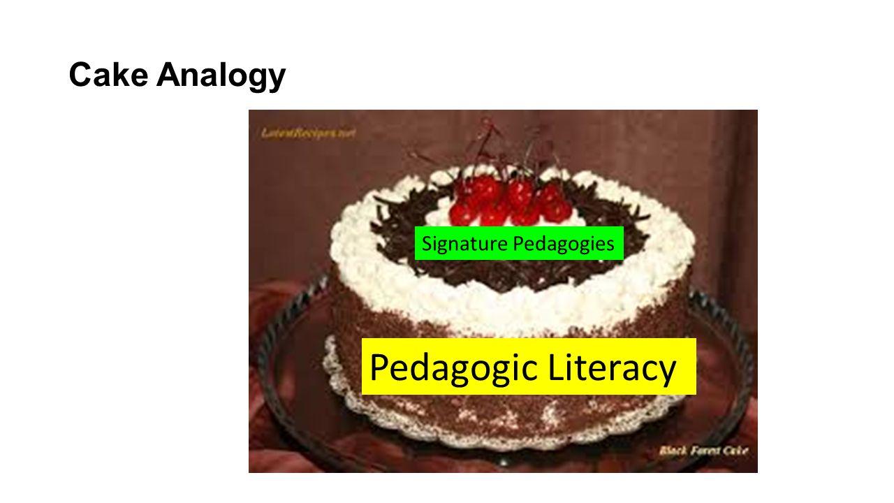 Cake Analogy Pedagogic Literacy Signature Pedagogies