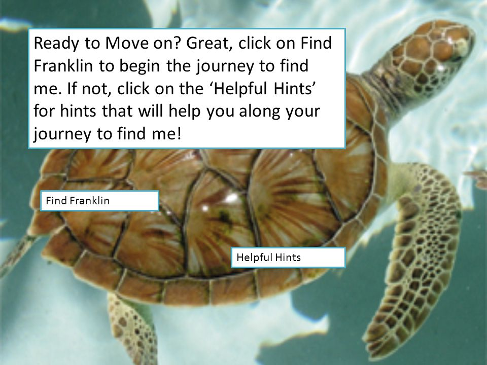 Ready to Move on.Great, click on Find Franklin to begin the journey to find me.
