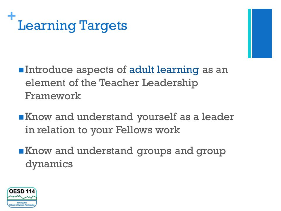 + Learning Targets Introduce aspects of adult learning as an element of the Teacher Leadership Framework Know and understand yourself as a leader in relation to your Fellows work Know and understand groups and group dynamics