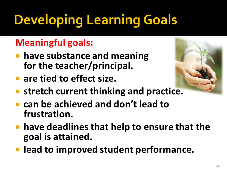 Meaningful goals:  have substance and meaning for the teacher/principal.