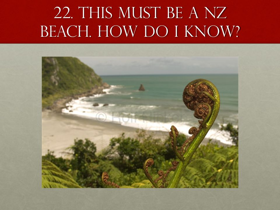 22. This must be a NZ beach. How do I know