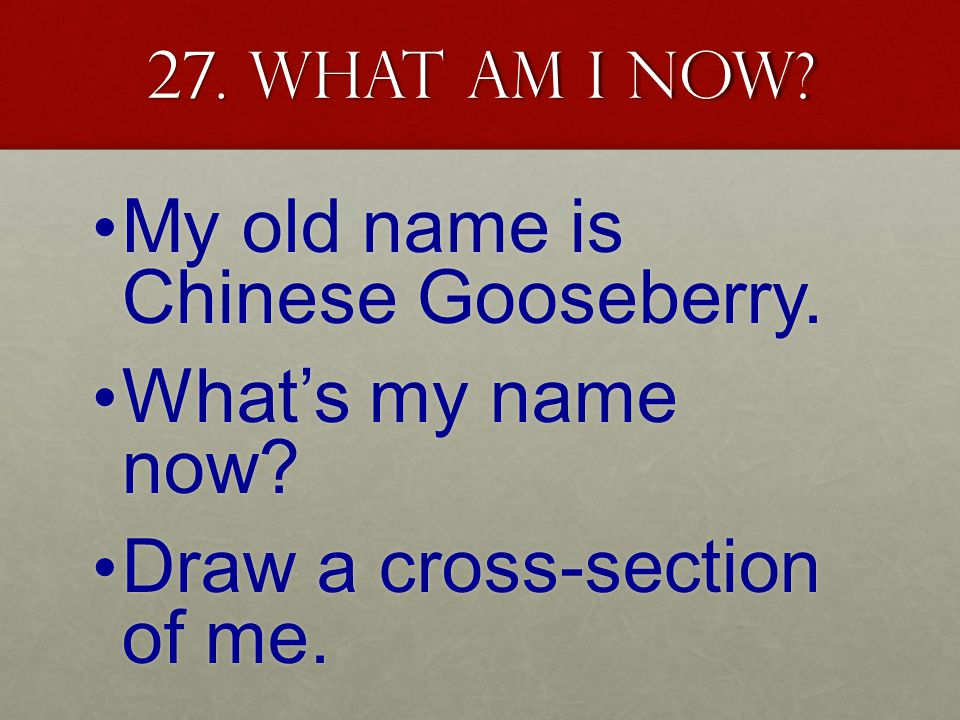 27. What am I now. My old name is Chinese Gooseberry.