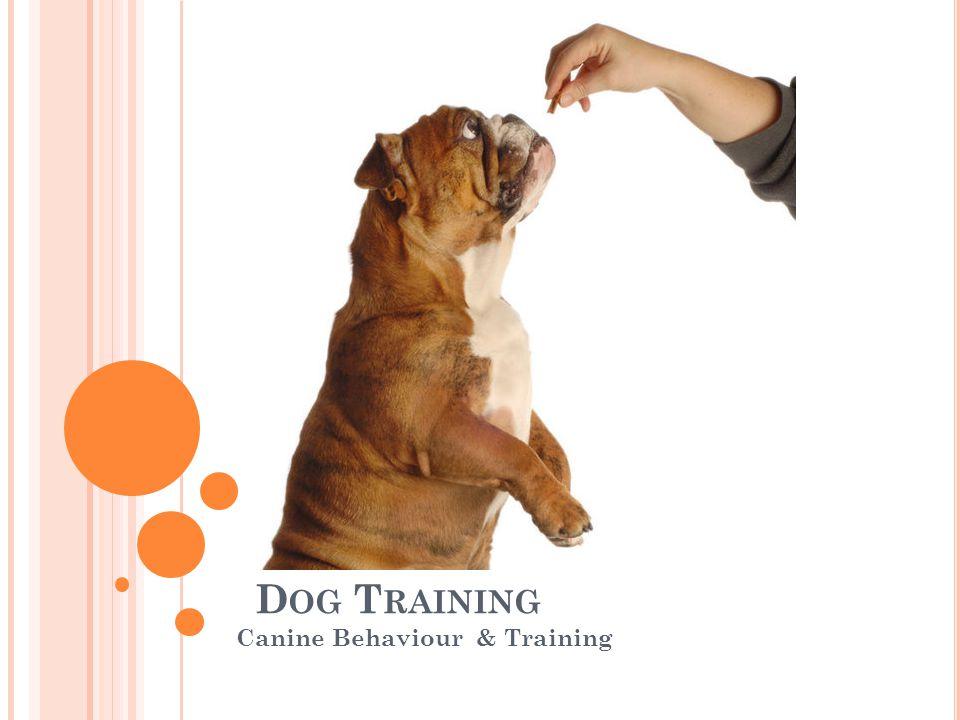 D OG T RAINING Canine Behaviour & Training