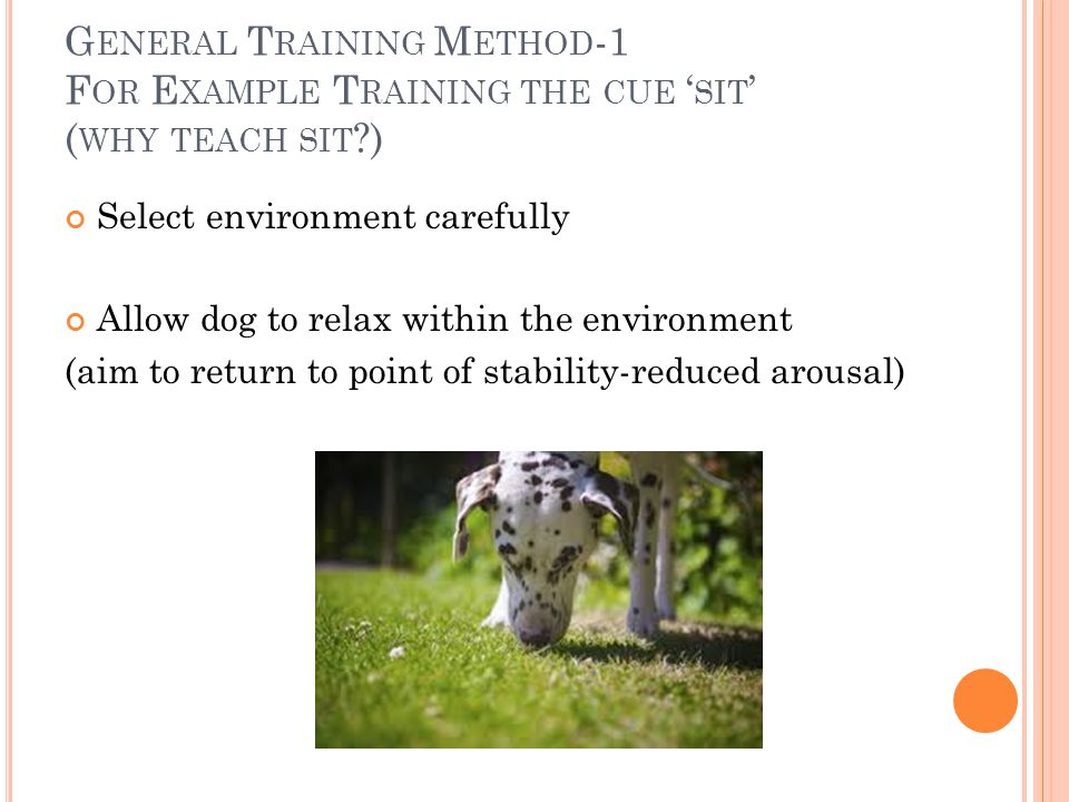 G ENERAL T RAINING M ETHOD -1 F OR E XAMPLE T RAINING THE CUE ' SIT ' ( WHY TEACH SIT ?) Select environment carefully Allow dog to relax within the environment (aim to return to point of stability-reduced arousal)