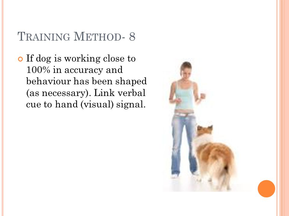 T RAINING M ETHOD - 8 If dog is working close to 100% in accuracy and behaviour has been shaped (as necessary).