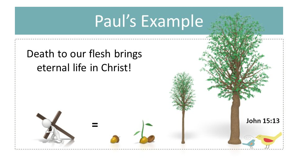 Paul's Example Death to our flesh brings eternal life in Christ! = John 15:13