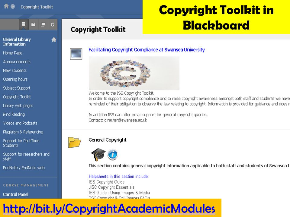 Information Services and Systems http://bit.ly/CopyrightAcademicModules Copyright Toolkit in Blackboard