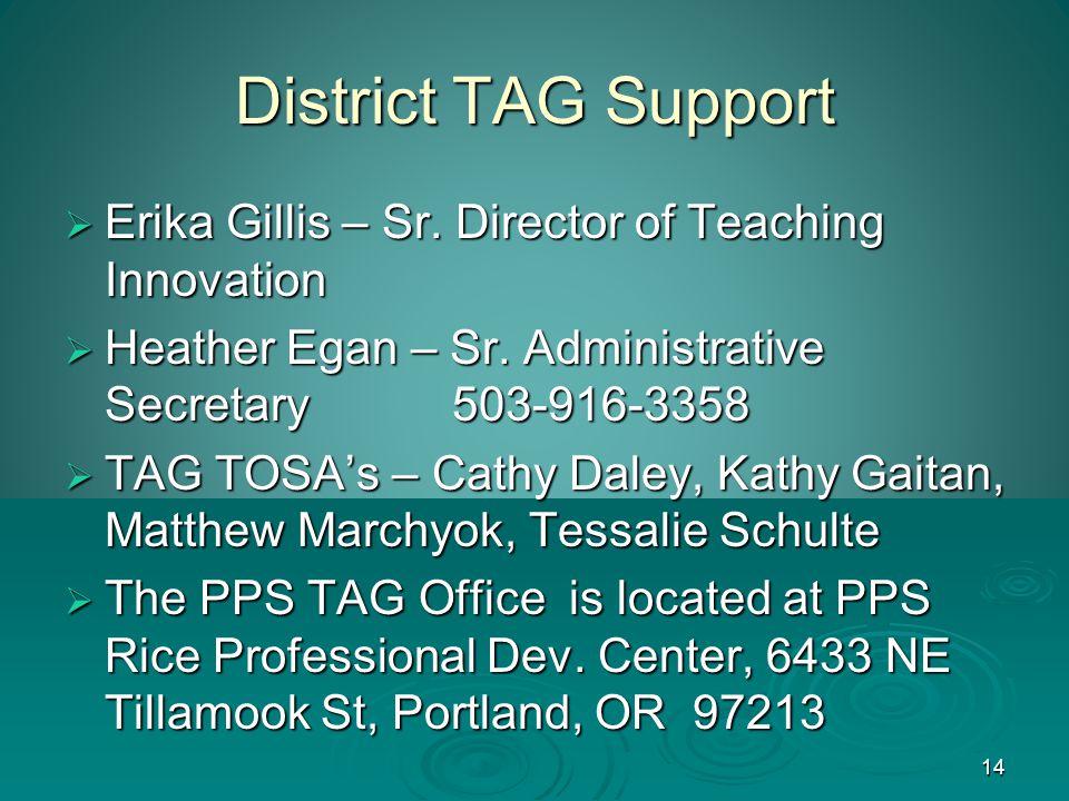 14 District TAG Support  Erika Gillis – Sr. Director of Teaching Innovation  Heather Egan – Sr.