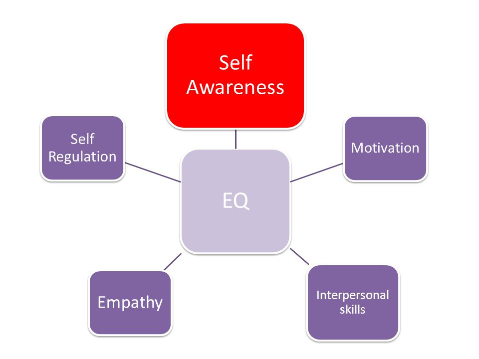 EQ Self Awareness Motivation Interpersonal skills Empathy Self Regulation