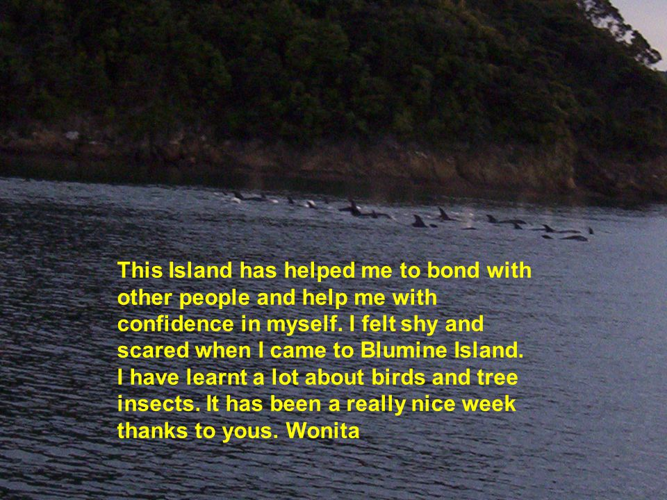 This Island has helped me to bond with other people and help me with confidence in myself. I felt shy and scared when I came to Blumine Island. I have