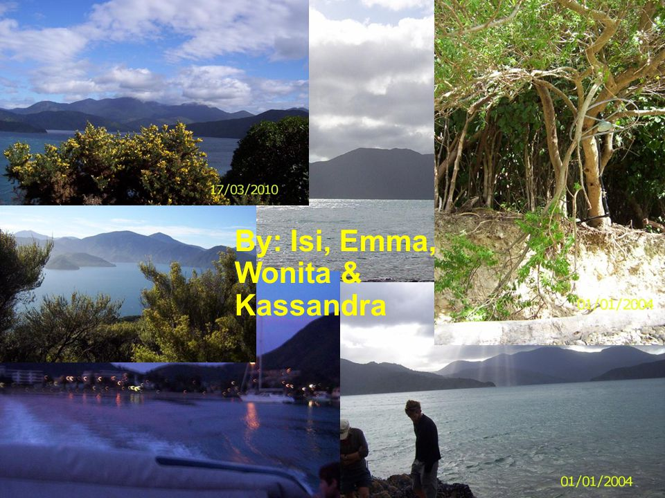 By: Isi, Emma, Wonita & Kassandra
