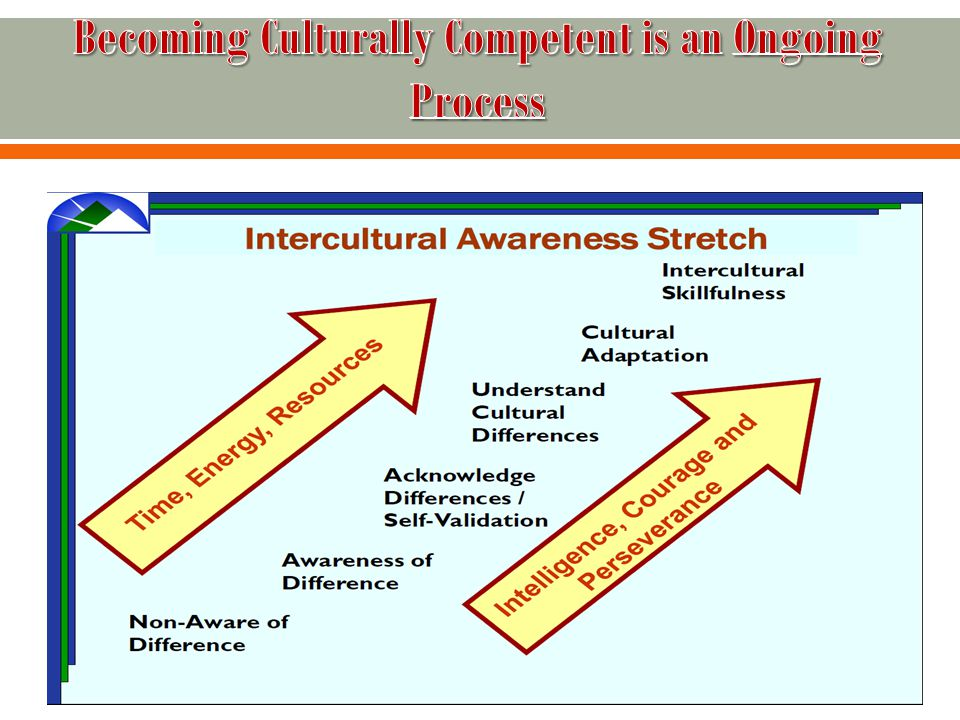  Intercultural Skillfulness  Cultural Adaptation  Understanding Cultural Differences  Acceptance/Acknowledgement Of Difference  Awareness Of Differences  Non-Aware Of Difference