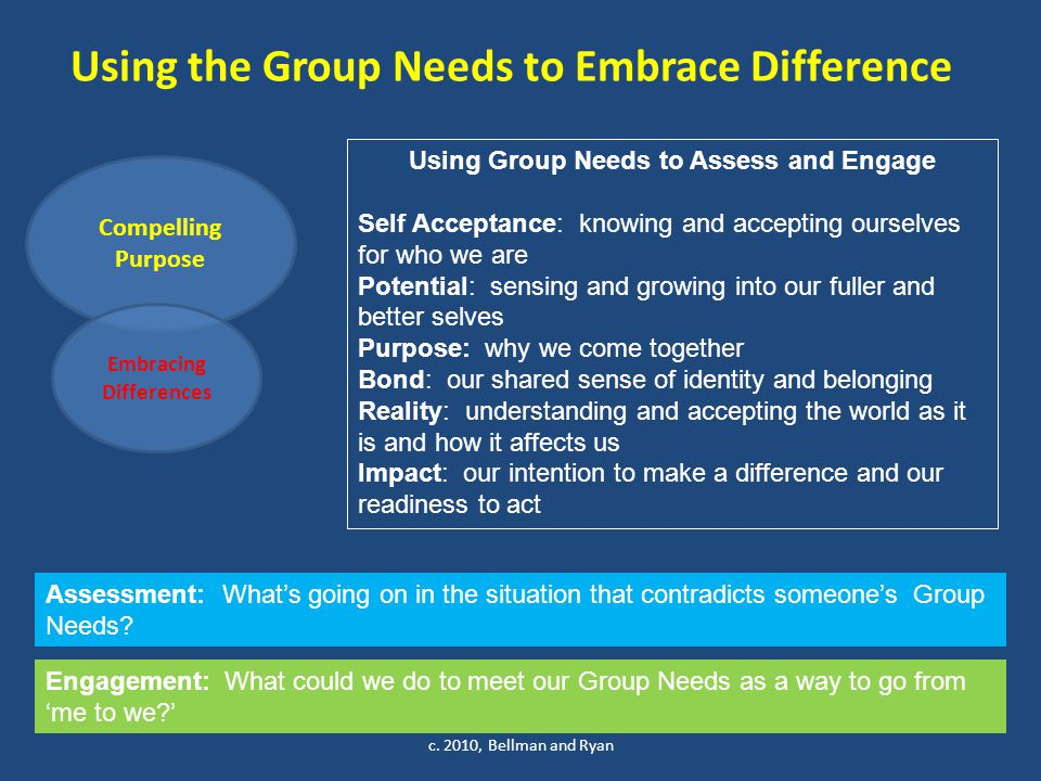 Using the Group Needs to Embrace Difference c.