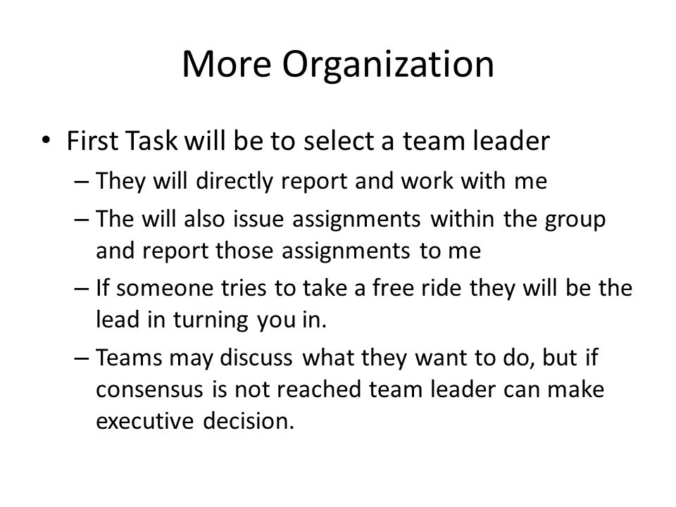 More Organization First Task will be to select a team leader – They will directly report and work with me – The will also issue assignments within the group and report those assignments to me – If someone tries to take a free ride they will be the lead in turning you in.