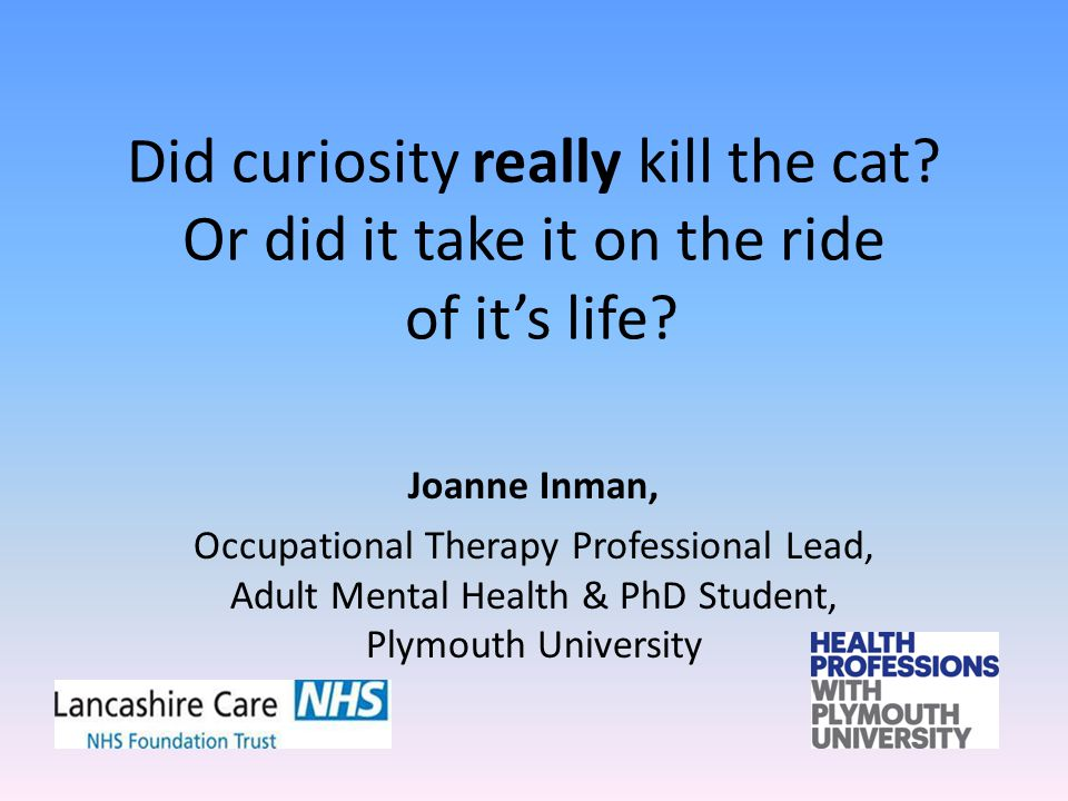 Joanne Inman Occupational Therapy Professional Lead, Adult Mental Health Did curiosity really kill the cat.