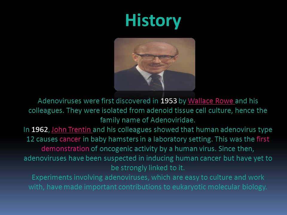 Adenoviruses were first discovered in 1953 by Wallace Rowe and his colleagues.