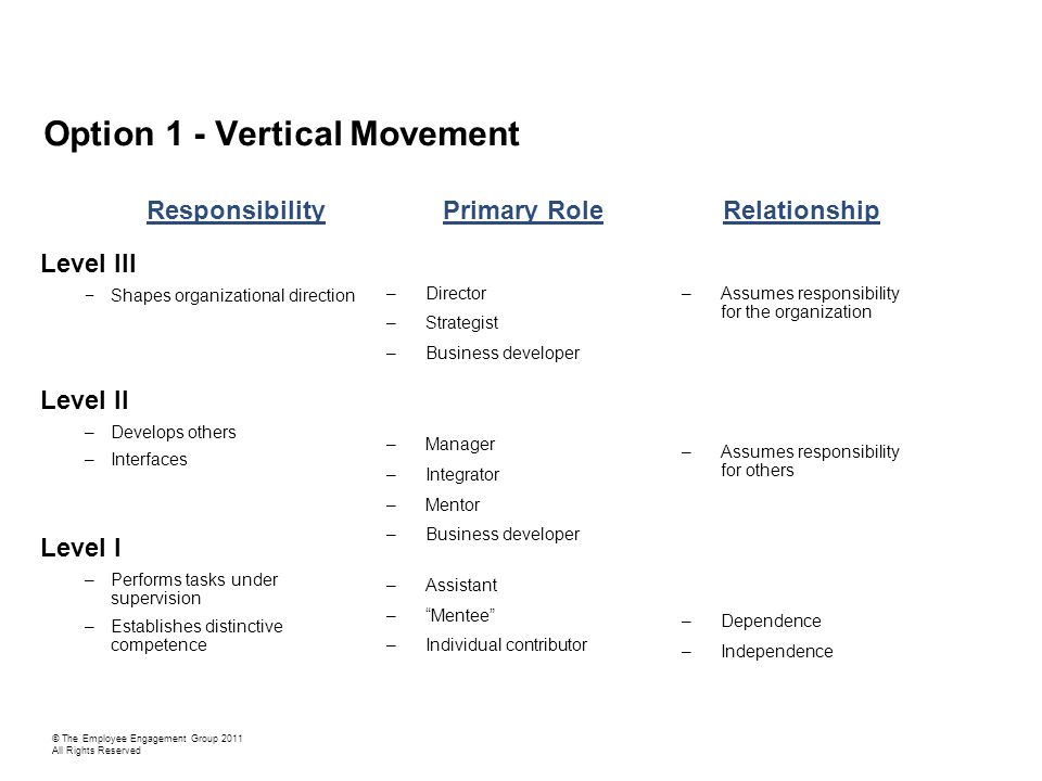 Option 1 - Vertical Movement Level III −Shapes organizational direction Level II –Develops others –Interfaces Level I –Performs tasks under supervision –Establishes distinctive competence Responsibility –Director –Strategist –Business developer –Manager –Integrator –Mentor –Business developer –Assistant – Mentee –Individual contributor Primary Role –Assumes responsibility for the organization –Assumes responsibility for others –Dependence –Independence Relationship © The Employee Engagement Group 2011 All Rights Reserved