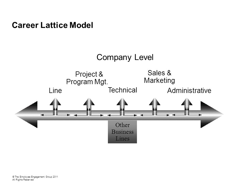 Technical/Project Management Career Lattice Model [division] © The Employee Engagement Group 2011 All Rights Reserved