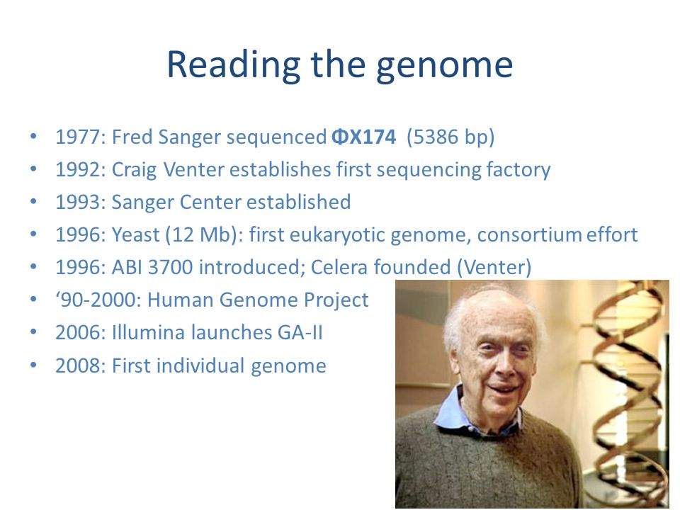 Reading the genome 1977: Fred Sanger sequenced ΦX174 (5386 bp) 1992: Craig Venter establishes first sequencing factory 1993: Sanger Center established 1996: Yeast (12 Mb): first eukaryotic genome, consortium effort 1996: ABI 3700 introduced; Celera founded (Venter) '90-2000: Human Genome Project 2006: Illumina launches GA-II 2008: First individual genome