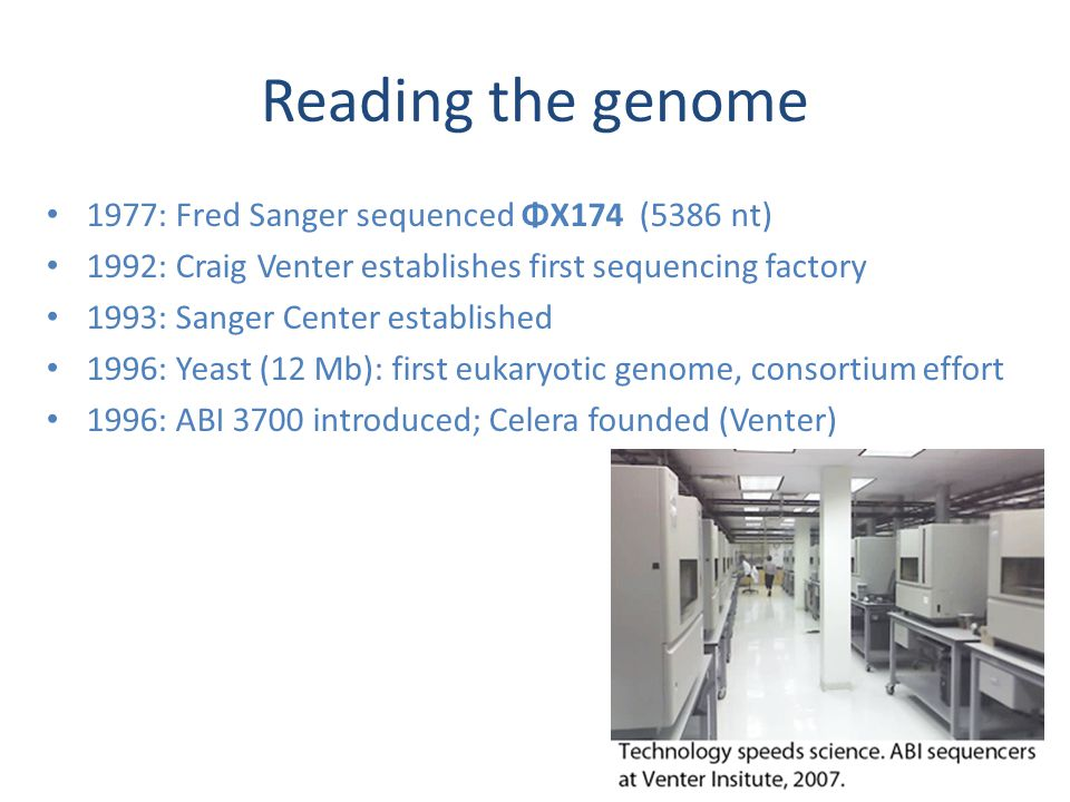 Reading the genome 1977: Fred Sanger sequenced ΦX174 (5386 nt) 1992: Craig Venter establishes first sequencing factory 1993: Sanger Center established 1996: Yeast (12 Mb): first eukaryotic genome, consortium effort 1996: ABI 3700 introduced; Celera founded (Venter)