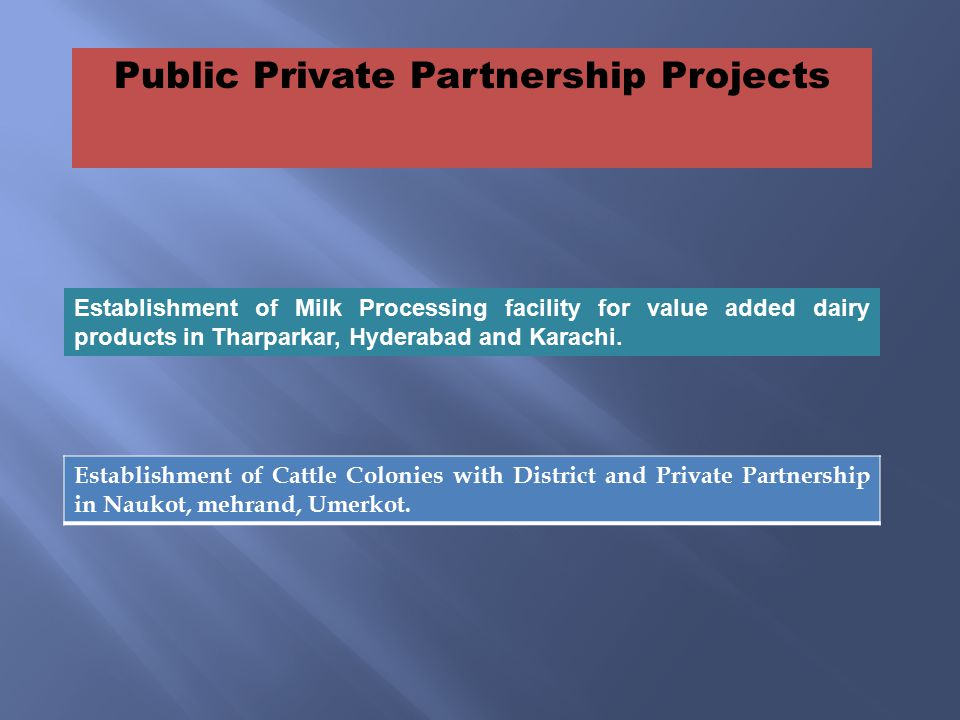 Public Private Partnership Projects Establishment of Cattle Colonies with District and Private Partnership in Naukot, mehrand, Umerkot.