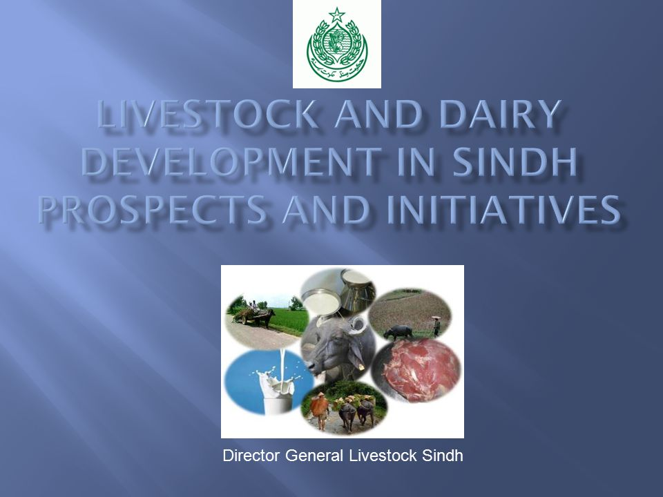 Director General Livestock Sindh