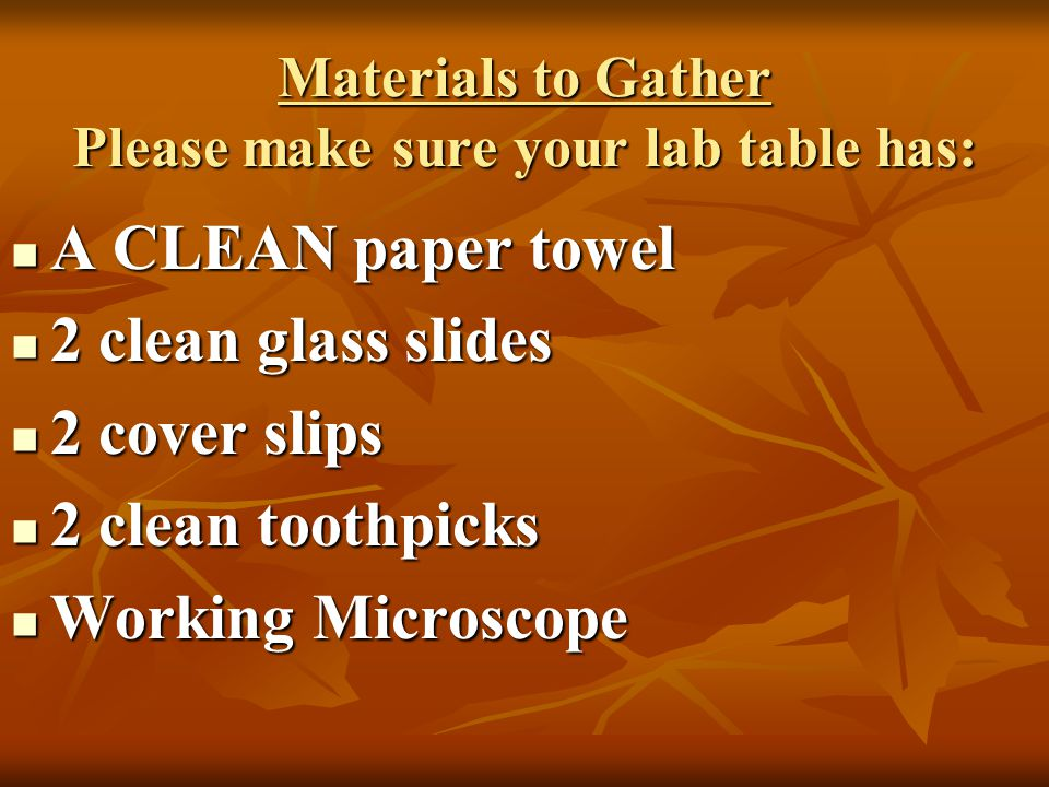 Materials to Gather Please make sure your lab table has: A CLEAN paper towel A CLEAN paper towel 2 clean glass slides 2 clean glass slides 2 cover sli