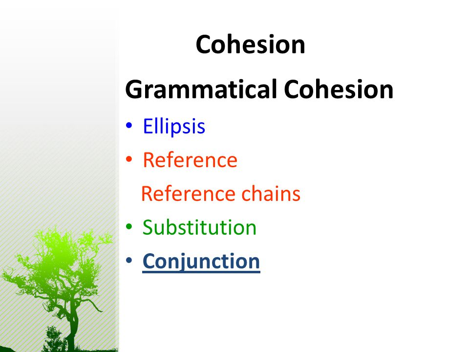 Cohesion Grammatical Cohesion Ellipsis Reference Reference chains Substitution Conjunction