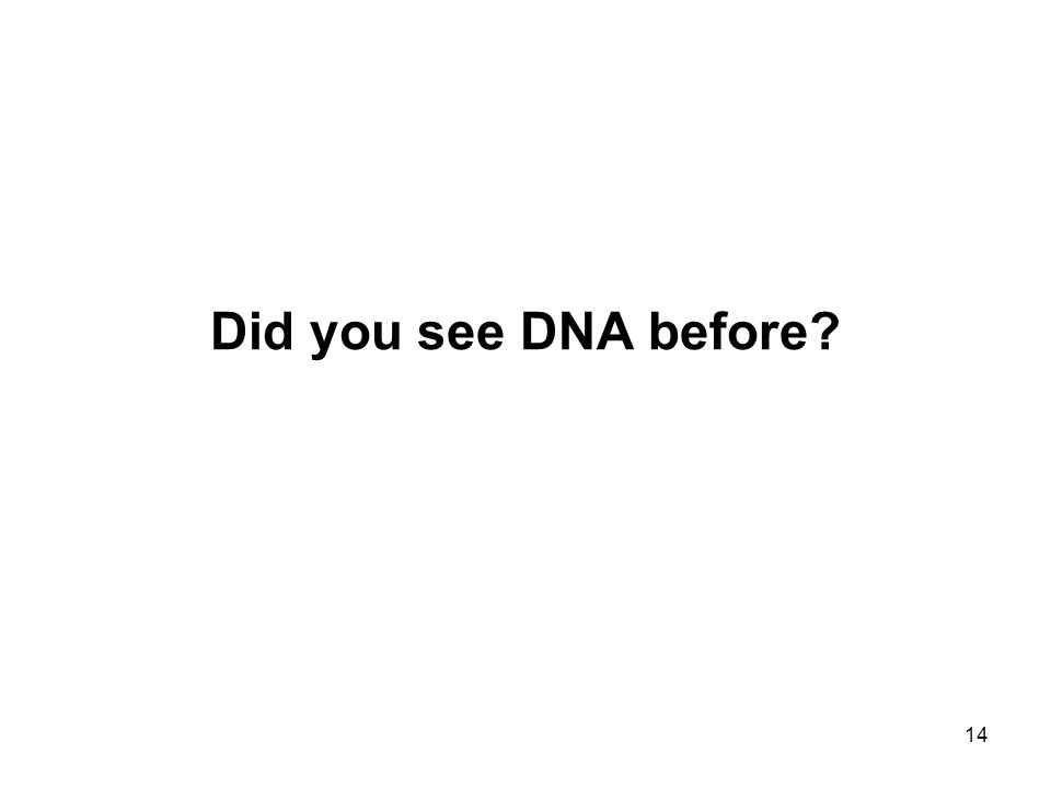 14 Did you see DNA before?