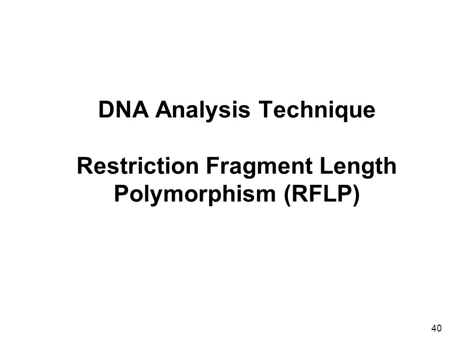 40 DNA Analysis Technique Restriction Fragment Length Polymorphism (RFLP)