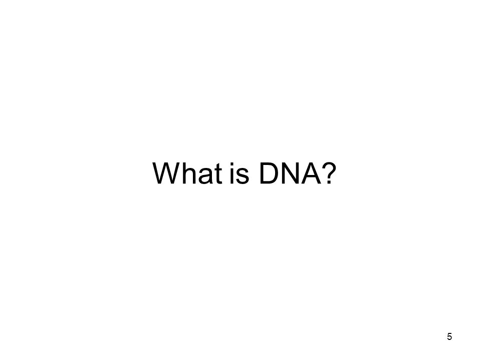 5 What is DNA?