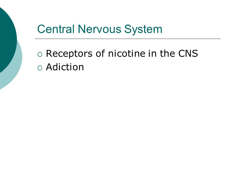 Central Nervous System  Receptors of nicotine in the CNS  Adiction
