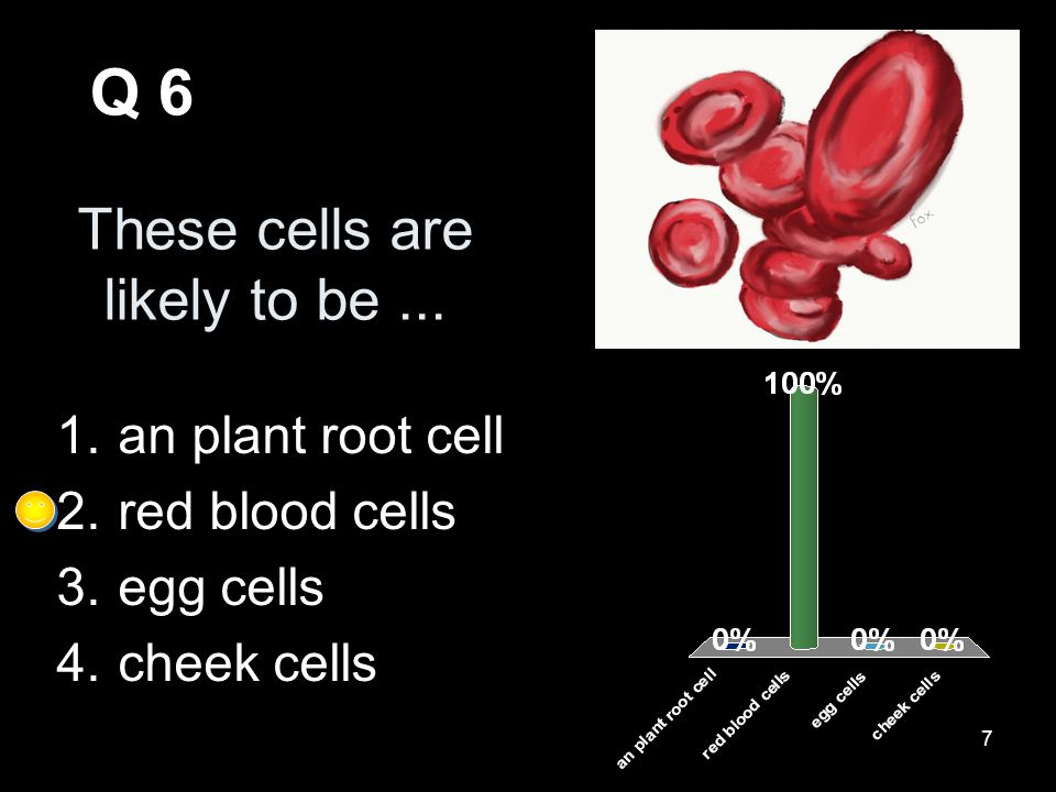 7 These cells are likely to be...