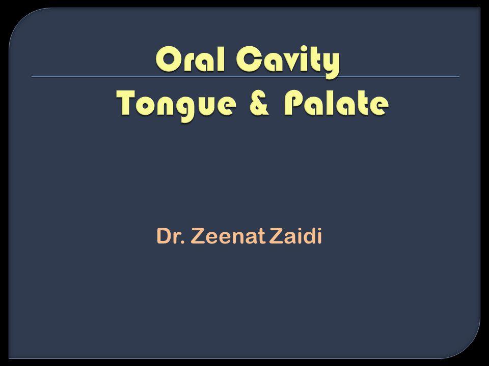 Dr. Zeenat Zaidi
