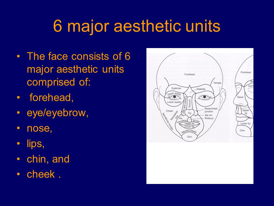 6 major aesthetic units The face consists of 6 major aesthetic units comprised of: forehead, eye/eyebrow, nose, lips, chin, and cheek.