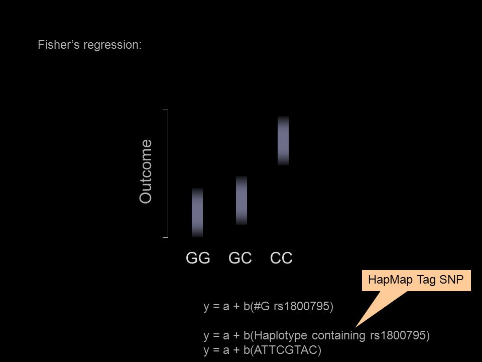 Fisher's regression: GG GC CC Outcome y = a + b(#G rs1800795) y = a + b(Haplotype containing rs1800795) y = a + b(ATTCGTAC) HapMap Tag SNP